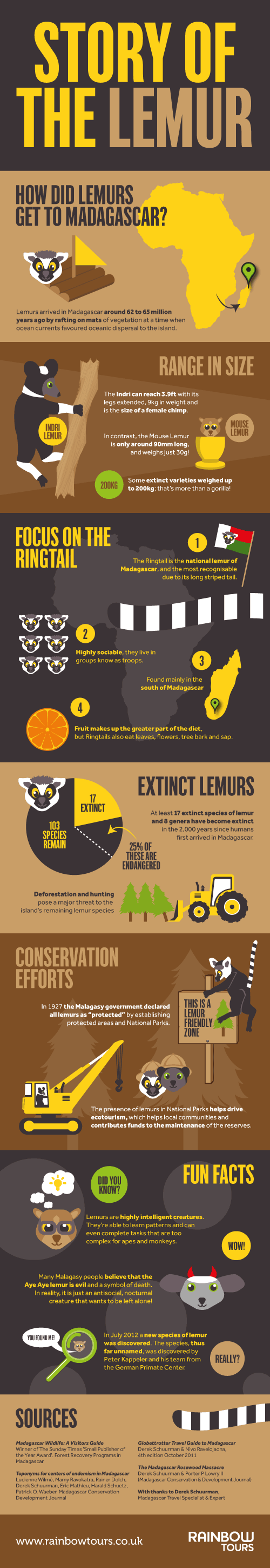 Lemur Facts Infographic � Learn about the endangered Malagasy species!