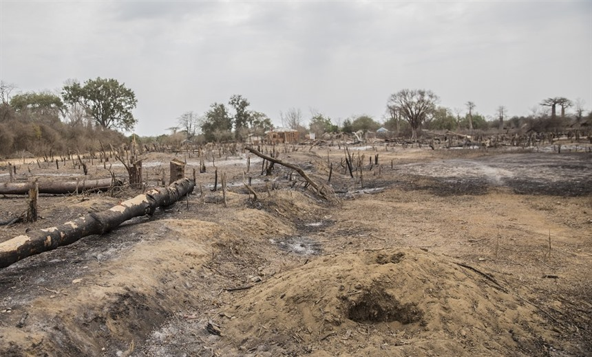 Chaotic deforestation in Menabe Antimena, arguably the country's most vulnerable protected area (A Rasamuel, WRI). This was recently covered by Emilie Filou for Mongabay