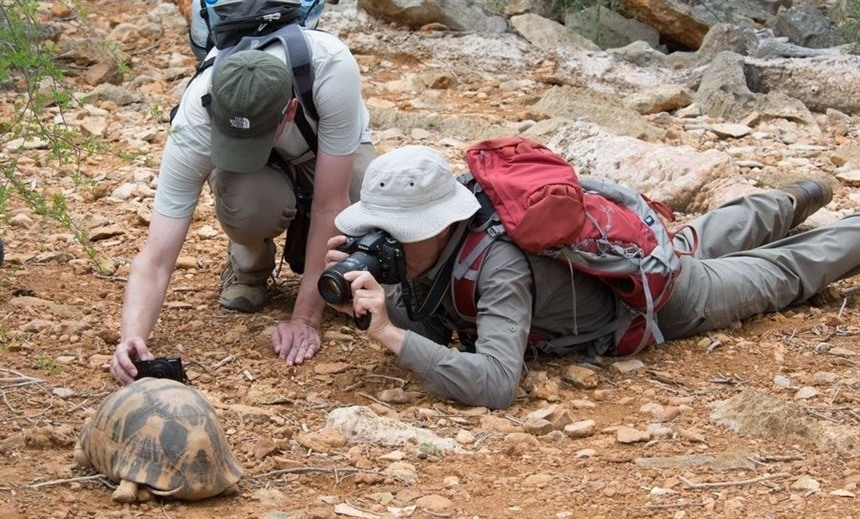 Rainbow Tours clients studying a Madagascar radiated tortoise at Lac Tsimanampetsotsa NP. In 2018 Mongabay covered massive seizures of this heavily trafficked, endemic reptile. (D. Austin)