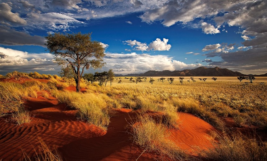 Vistas like this one are common across Namibia's many private reserves. © Willem Kruger / Shutterstock