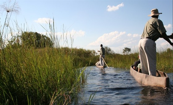 Bountiful Botswana from Chobe to the Kalahari : Section 3