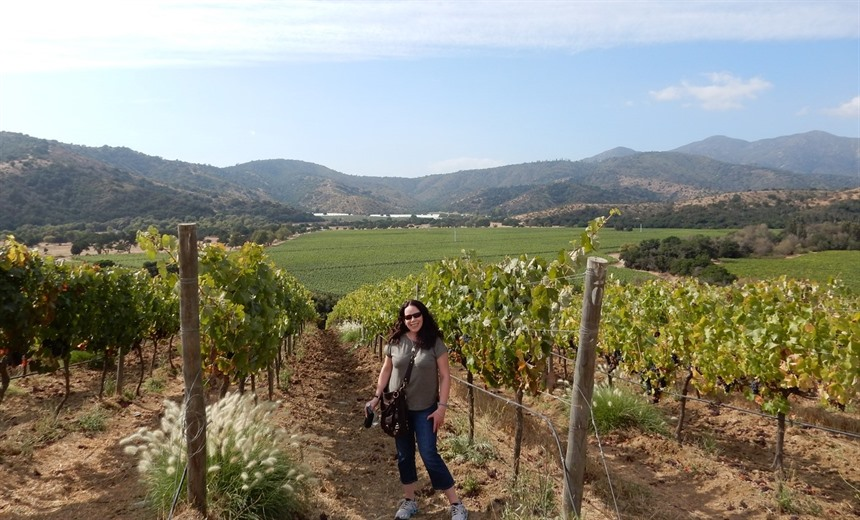 Malbec and Sauvignon; wine tasting travels through Argentina and Chile : Section 2