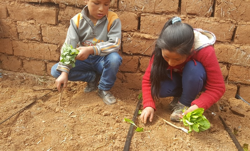 Spread your wings: a tale of responsible travel in Peru : Section 8