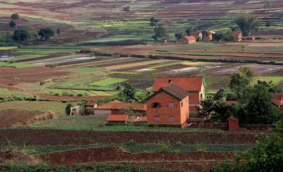 Rice paddies dominate the landscape in the central highlands of Madagascar