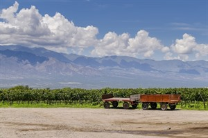 Cafayate winery