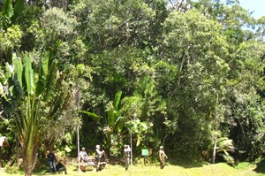 Wildlife tour group at rainforest edge, Mitsinjo (Derek)