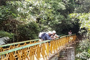 Visitors on the bridge at Ranomafana