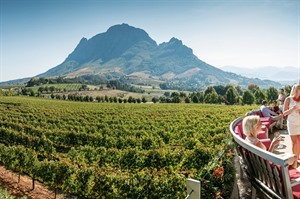 Winelands Tour full day 1