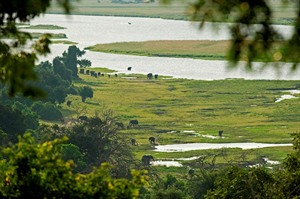 Sanctuary Chobe Chilwero 1