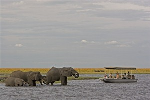 Sanctuary Chobe Chilwero 3