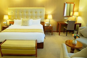 Jupiter International Hotel Bole Room