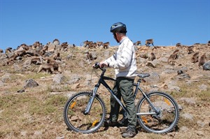 The lodge has 10 mountain bikes for hire.