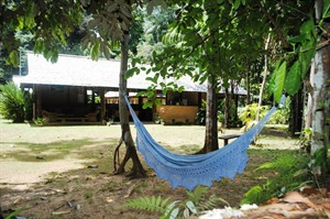 Hammock at Atta Rainforest Lodge