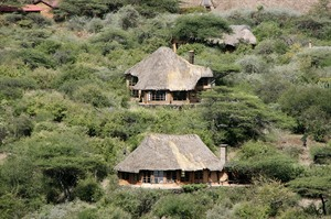 Lewa Wilderness 1