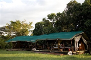 Offbeat Mara Camp 1