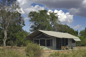 Porini Lion Camp 2