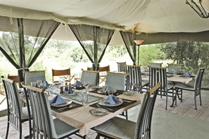 Porini Lion Camp 6