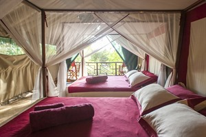 Mandrare River Camp - Tented accommodation