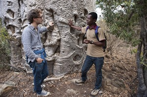 Learning about Baobabs, Mandrare River Camp