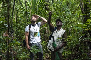 Exploring the lowland rainforest with resident guide