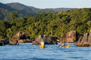 Kayaking where lowland rainforest extends to Antongil Bay