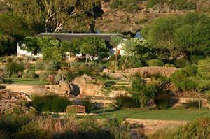 Bushmans Kloof Gardens
