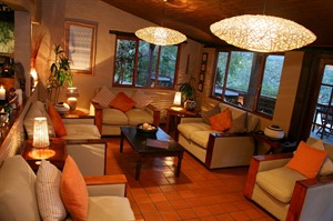 Hog Hollow Country Lodge - the villa