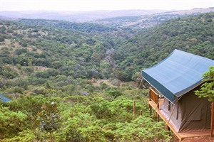 Views from Inkwenkwezi Game Reserve