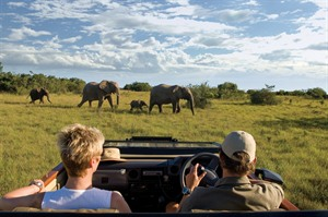 On safari at Kichaka Lodge