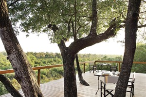 Londolozi Tree Camp Views