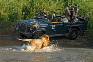 Safari at Londolozi Varty Camp