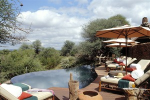 Makanyane Safari Lodge Pool