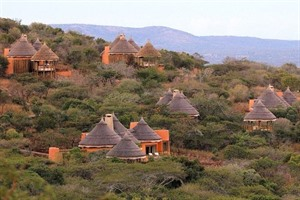Thanda Private Game Reserve 1