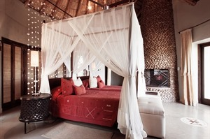 Thanda Private Game Reserve 3