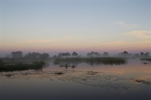 Mist Over The Lagoon
