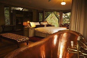 Mara Plains Camp 4