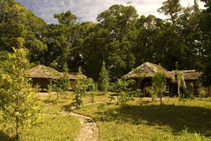 Masoala Forest Lodge - tented accommodation exterior