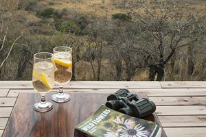 Rhino Ridge Safari Lodge 2