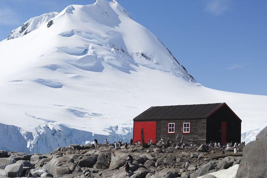 M V Ocean Nova Antarctica The White Continent