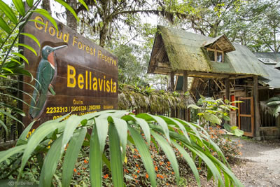 Bellavista Cloud Forest Reserve & Lodge