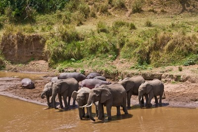 Govenors' Private Camp