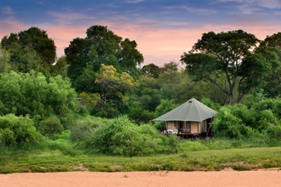 &Beyond Ngala Private Game Reserve