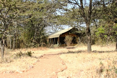 Porini Bush Camp