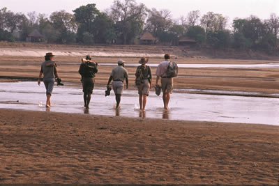 Robin Pope Walking Safaris