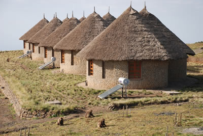 Simien Lodge
