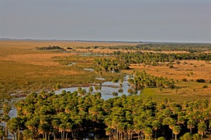 The vast Ibera Wetlands