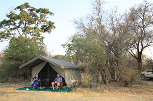 Authentic Tent in Hwange