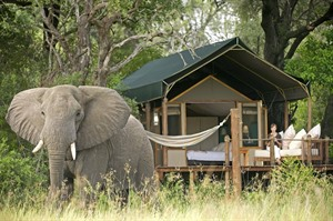 Botswana By Sanctuary Retreats 6