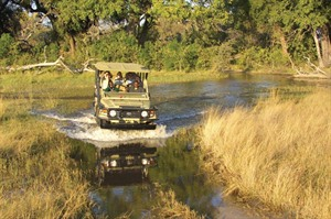 A watery game drive