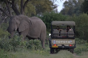 Botswana's Moremi and Okavango Delta small group tour 2